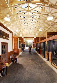 Sky lights inside the horse Barn...Shucks! Horse lives better then I do