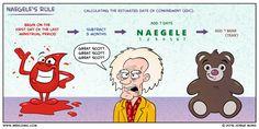 Naegele's Rule | Medcomic
