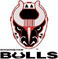 Birmingham Bulls (1992-2001) Birmingham Jefferson Convention Center