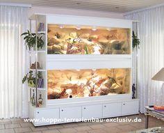 Inspiration terrarium
