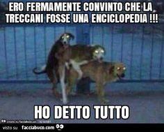 Ero fermamente convinto c - Italia Divertenti Animals And Pets, Funny Animals, Italian Memes, Sad Stories, Good Jokes, Haha, Funny Memes, Cartoon, Survival