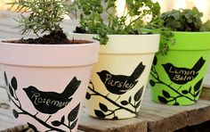 katie_brown_workshop_chalkboard_pots_gerbera_designs