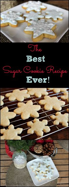 The Best Sugar Cookie Recipe Ever- This is a foolproof recipe. Cookies come out perfectly every time!