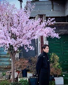 Jung So Min, Asian Actors, Korean Actors, Lee Min Ho Wallpaper Iphone, All Korean Drama, Lee Min Ho Photos, Kim Go Eun, Tamar Braxton, Royal Babies