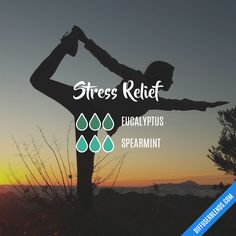 Stress Relief Diffuser Blend