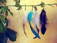 Feather earrings - Fjädrar i olika färger 20kr/st. ...