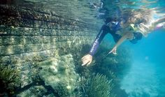 """Dry Tortugas National Park, Florida - """"The turtles"""" with hundreds of shipwrecks and 30 varieties of coral. Shark Diving, Scuba Diving, Learn To Scuba Dive, Dry Tortugas, Water Pictures, Florida Usa, Places Of Interest, Great Smoky Mountains, Underwater World"""