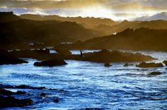 Todos os dias o mar recua e dá lugar a paisagens maravilhosas cheias de vida . <br />Rochas que parecem montanhas no meio da neblina, ondas furiosas de espuma branca  parecem neve, <br />Uma simples gaivota à procura de algo para comer, <br />por instantes confundo com uma águia. <br />Todos os dias o mar nos oferece um novo mundo ....