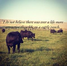 Unless it's life on a grain farm! Grain farm with my parents as a child, and cattle as an adult with my husband and our kids. Ranch Farm, Ranch Life, The Ranch, Cattle Ranch, Country Quotes, Country Life, Country Girls, Western Quotes, Way Of Life