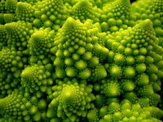 Romanescu, or Romanesco, is closely related to cauliflower. If you enjoy cauliflower or broccoli you'll like this unique fractal vegetable. It's quite healthy being loaded with antioxidants.