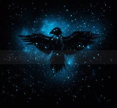 Aquila the eagle Glow in the Dark Constellation by StellaMurals