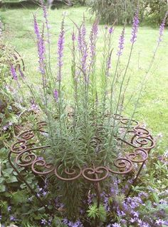 Part of the garden design is to juxtapose circular and square/angular shapes. This flower support will be a nice contrast to the garden fence and has a pattern similar to the Fiesta Ware heart bowl valentine. There could be a series of an odd number of these supports to provide repetition. I would paint them Fiesta Ware orange, yellow, and purple for spot color.