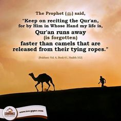"Narrated Abu Musa (may Allah be pleased with him): The Prophet (pbuh) said ""Keep…"