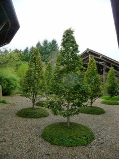 Le blog de Parcs et Jardins de L'Oise