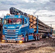 Show Trucks, Big Trucks, Auto Union 1000, Wiking Autos, Vw Bus, Semi Trailer Truck, Customised Trucks, Luxury Bus, Scania V8