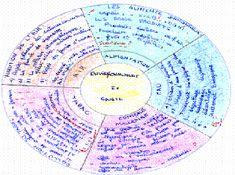 Pédagogies de l'autonomie (de l'élève)