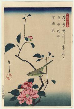 Utagawa Hiroshige, Bush Warbler and Camellia