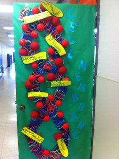 Plant Cell Door I Love This The Science Classroom
