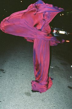 Ruvan Wijesooriya, Purple Dress (Sculptural), Brooklyn NY, 2008 •