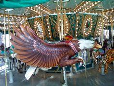 eagle - Guadalupe River Park, San Jose CA