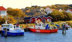 Göteburg archipelago -  Fall in Scandinavia – In Photos