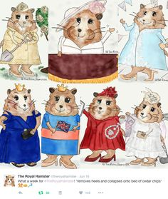 AN INTERVIEW WITH THE ROYAL HAMSTER - What Would Kate Do?
