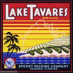 Lake Tavares :: Florida Southern College Fruit and Vegetable Crate Label Collection Vintage Labels, Vintage Ads, Vintage Signs, Tavares Florida, Orange Crate Labels, Label Art, Vegetable Crates, Florida Oranges, Apple Fruit