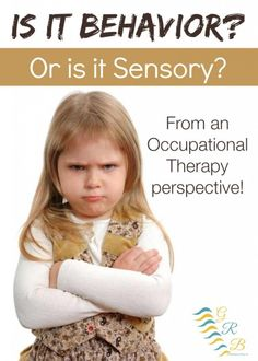 Series of posts discussing relationship of behavior & sensory issues...