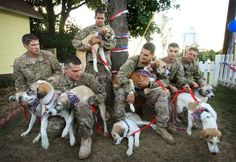 Guardians of Rescue helps vets and pets Long Ilsnad, NY