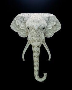 作品に登場してくる動物たちの、ある共通点とは。