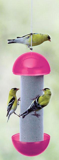 Nature/'s Market Métal Suspendu Lanterne jardin Wild Bird Seed Feeder
