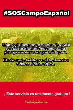 Servicio gratuito para ayudar a ponerse en contacto a empresarios y trabajadores del sector agrario en España. Visite el enlace para más información. Interesting Facts, Pest Control, Business Men, Agriculture, Slip On