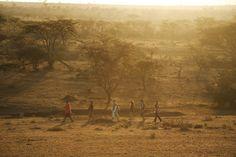 Go on a walking with one of the experienced guides - Ol Seki Hemingways Mara, Africa Travel, Big Game, Kenya, Ol, Safari, To Go, Walking, Walks, Hiking