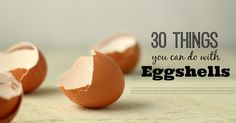 How to use eggshells, besides crushing and putting them in chicken scratch! Some awesome ideas in here.