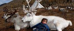 DeerTotem-West-Taiga-Hovsgol-2006-1320x564.jpg (1320×564)