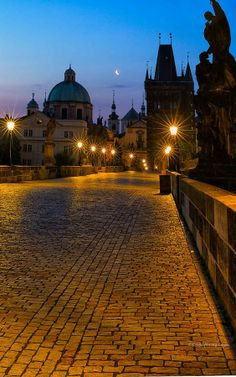 Charles Bridge by Alfred Forns on 500px