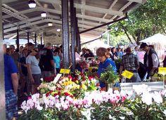 Ann Arbor Farmer's Market. Ann Arbor, MI. My home sweet home. <3