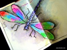 Dion Dior: Dragonfly-the colors