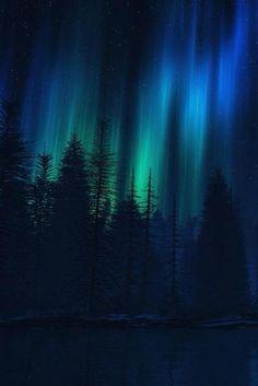 Pics For > Aurora Borealis Northern Lights Wallpaper Northern Lights Wallpaper, Lit Wallpaper, Forest Wallpaper, Painting Northern Lights, Northern Lights Tattoo, Widescreen Wallpaper, Trendy Wallpaper, Desktop Wallpapers, Wallpaper Ideas