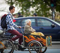 Copenhagen Bikehaven by Mellbin - Bike Cycle Bicycle - 2015 - 0311 Go, cat, go!