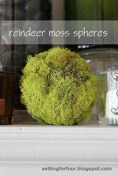 Have you heard of Reindeer Moss? It's a gorgeous bright green- perfect for Spring! See how I made these easy DIY Moss Spheres for my Spring home decor! www.settingforfour.com