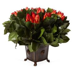 "Check out this item at One Kings Lane! 13"" Protea in Lion-Head Box"