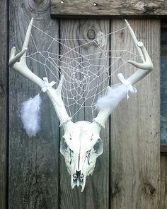 Deer Antlers and Skull with Dream Catcher by BrenhamBuilt on Etsy