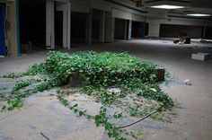 Completely Surreal Photos Of America's Abandoned Malls :)