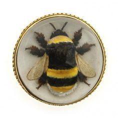 An Edwardian Essex crystal bee brooch, the circular brooch depicting the image of a large bumble bee within a crystal dome, set to a yellow gold beaded mount and closed backed reverse, with brooch fitting, measuring approximately 26mm in diameter, gross weight 8.8 grams, circa 1900