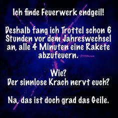 #feuerwerk #jahreswechsel #silvester #krach #trottel #rakete