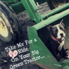 Take me for a Ride on your big green tractor <3