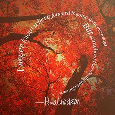 Pema Chodron Quotes - Forward