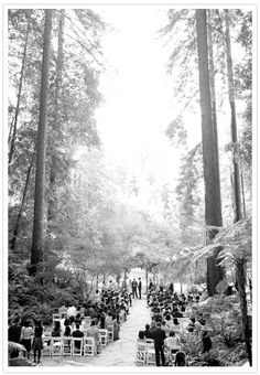 Gorgeous Woodsy Wedding. I would love to do something like this