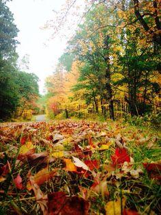 Autumn in Duluth, MN